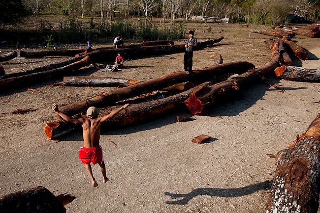 Children in Carmalita play on logs outside  a legal community mill in the Mayan Biosphere.C armalita is a legal town inside the reserve that is allowed to log and extract products from the forest in exchange for protecting the forest from invaders.