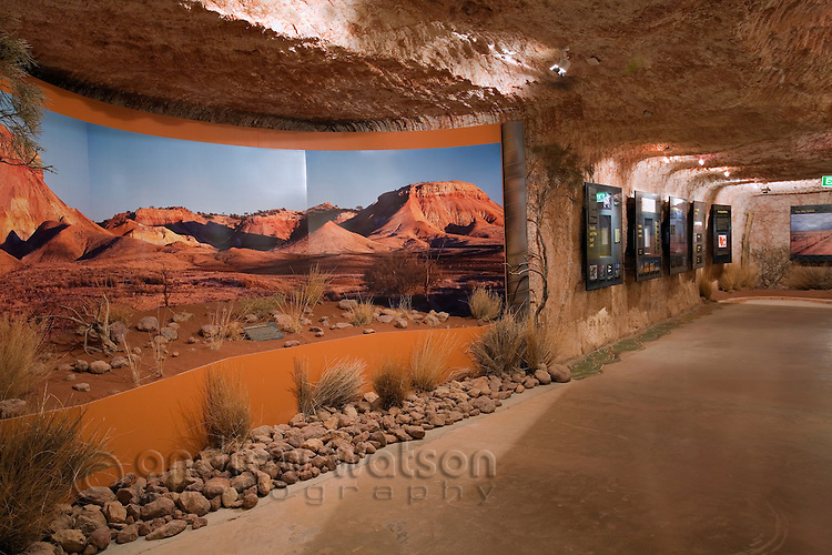 Natural history exhibit in the underground Umoona Opal Mine and Museum.  Coober Pedy, South Australia, AUSTRALIA.