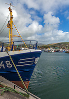 Ireland, Irish, Dingle, Dingle Peninsula, Kerry, County Kerry, Ring of Kerry, harbor, marine, wharf, quay, marina, boat, fleet, fishing boat, village, fishing village, coastal, seagoing, travel, tourism, tourist destination