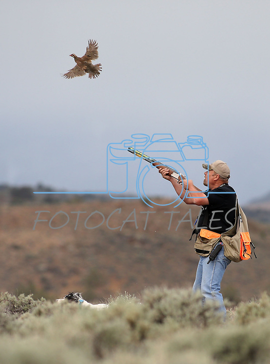 Dan Hannah competes in the U.S. Bird Dogs Western State Nationals in Mound House, Nev., on Friday, April 24, 2015. <br /> Photo by Cathleen Allison