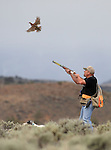 Bird Dog Trials - 2015