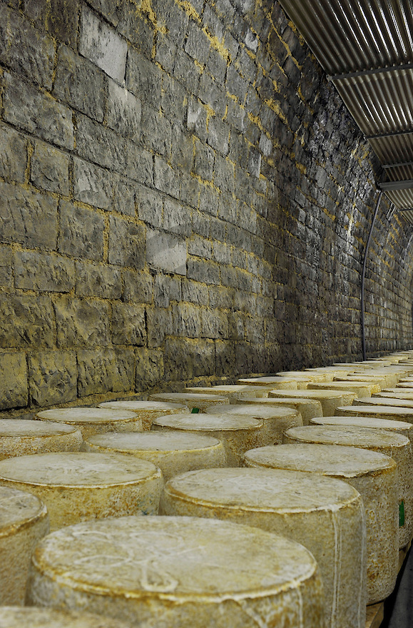 30/11/11 - SAINT PONCY - CANTAL - FRANCE - Affinage de fromages AOP CANTAL en tunnel pour la Fromageries des Monts du Cantal - Photo Jerome CHABANNE