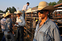 A confident Brooks Robinson looks into the setting sun before Dave Martin's Rodeo Thursday at the 2010 Fauquier County Fair in Warrenton, VA.