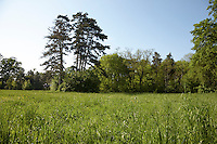FOREST_LOCATION_90084