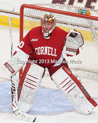 Lauren Slebodnick (Cornell - 30) - The Boston College Eagles defeated the visiting Cornell University Big Red 4-3 (OT) on Sunday, January 11, 2012, at Kelley Rink in Conte Forum in Chestnut Hill, Massachusetts.