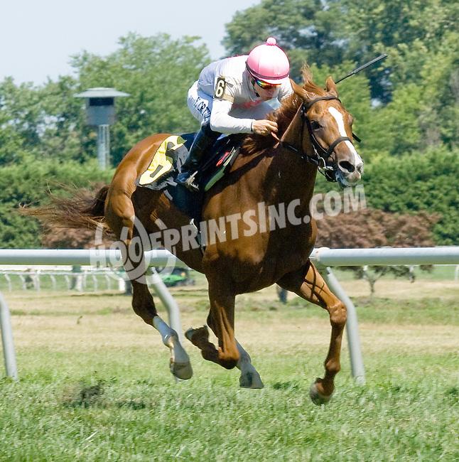 Mykindofladyfriend winning at Delaware Park on 7/25/12