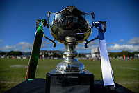 The trophy stands on display during the Victoria Tavern Wellington women's premier club rugby final between Oriental-Rongotai and Old Boys University at Petobe Rec in Wellington, New Zealand on Saturday, 5 August 2017. Photo: Dave Lintott / lintottphoto.co.nz