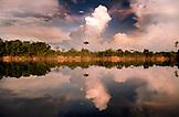 BRAZIL,  Amazon Jungle, landscape of an Amazon River tributrary, Agua Boa fishing lodge