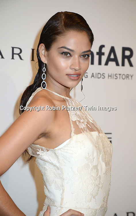 Shanina Shaik attends the amfAR New York Gala on February 5, 2014 at Cipriani Wall Street in New York City.