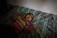 Rafah, Gaza Strip, Jan 12 2009.More than 1000 civilians, mainly coming from houses near de Philadelphia line (border with Egypt) that is being extensively boombed by the Israeli air force, took refuge in the UNRWA operated preparatory school number one. On the 16th day of the Israeli operation in Gaza, one and a half million people are still deprived of electricity and basic supplies, as well as being unable to flee from the densely populated combat zone.