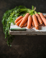 Carottes fanes bio // Organic carrot