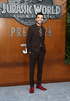 LOS ANGELES, CA - JUNE 12: Justice Smith, at Jurassic World: Fallen Kingdom Premiere at Walt Disney Concert Hall, Los Angeles Music Center in Los Angeles, California on June 12, 2018. Credit: Faye Sadou/MediaPunch