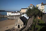 Pretty buildings and palm tree Tenby harbour Pembrokeshire Wales