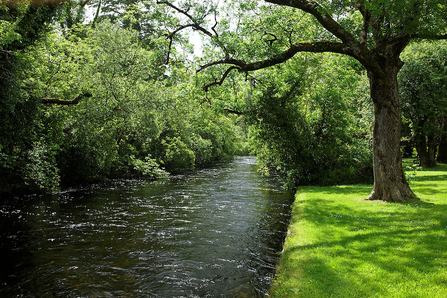 The River Cong, Cong, County Mayo, Republic of Ireland