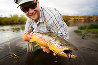 An angler holds a brown trout on the Smith River southeast of Helena, Montana.
