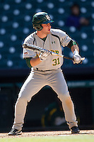 Baylor Bears catcher Nate Goodwin #31 prepares to bunt during the NCAA baseball game against the California Golden Bears on March 1st, 2013 at Minute Maid Park in Houston, Texas. Baylor defeated Cal 9-0. (Andrew Woolley/Four Seam Images).