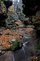 Parfrey's Glen Creek<br />