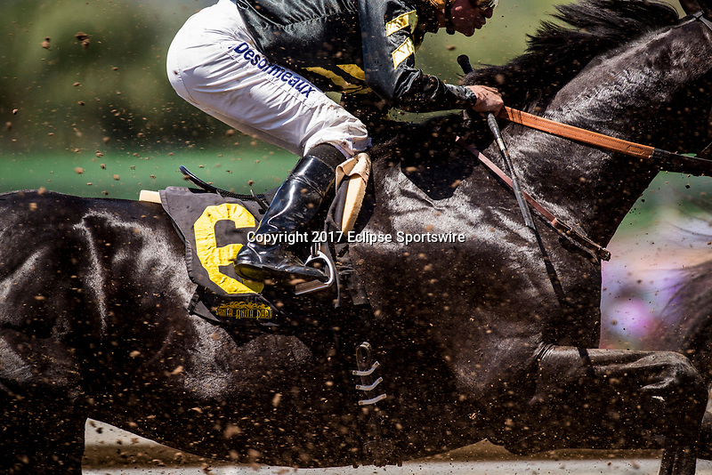 ARCADIA, CA - MAY 27: Soneteer races in a maiden race  at Santa Anita Park  on May 27, 2017 in Arcadia, California. (Photo by Alex Evers/Eclipse Sportswire/Getty Images)