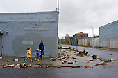 New York, New York.October 30, 2012..Firewood from a nearby shop floated up the street when the Gowanus Canal over ran its banks and flooded several city blocks at the height of Hurricane Sandy..