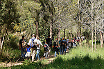 Israel, Shephelah. Hiking in Park Canada