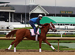 April 28, 2019 : Out for a Spin works out at Churchill Downs, Louisville, Kentucky, preparing for a start in the Kentucky Oaks. Owner Commonwealth Stable, trainer Dallas Stewart. By Hard Spun x My Mammy (Came Home) Mary M. Meek/ESW/CSM