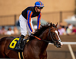 AUG 17: Ginobili withFlorent Geroux wins a maiden race at The Del Mar Thoroughbred Club in Del Mar, California on August 17, 2019. Evers/Eclipse Sportswire/CSM