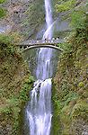 Multnomah Falls makes a spectacular and dramatic descent in the Columbia Gorge Scenic Area in Oregon, USA.