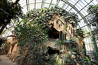 Tropical Rainforest Glasshouse (formerly Le Jardin d'Hiver or Winter Gardens), 1936, René Berger, Jardin des Plantes, Museum National d'Histoire Naturelle, Paris, France. Low angle view of the cave, covered by luxuriant Epiphytes plants, seen in the morning light against the glass and metal roof structure of the Art Deco style glasshouse.