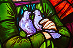 Stained glass window by Henry Holiday 1863 Shimpling church, Suffolk, England, UK Pre-Raphaelite artist detail of two doves held by Mary