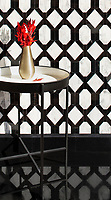 Tanzanian Trellis Grand, a waterjet stone mosaic, shown in polished Calacatta and Nero Marquina. Designed by Joni Vanderslice as part of the J. Banks Collection for New Ravenna.