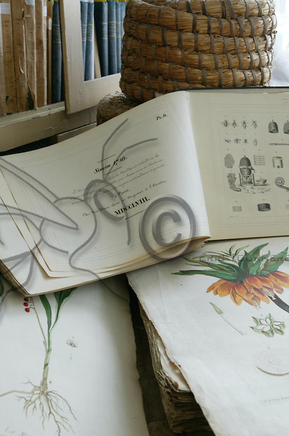 Books and old engravings at the Société Centrale d'Apiculture library in Paris.