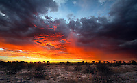 Fiery sky at sunset over Kalahari landscape