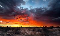 Fiery sky at sunset over Kalahari landscape