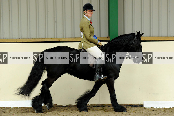 Championship for classes 16 to 19.  BSPS Area 15 Essex April Show. Brook Farm Training Centre. Essex. 18/04/2015. MANDATORY Credit Peter Reynolds/Sportinpictures - NO UNAUTHORISED USE - 07837 394578