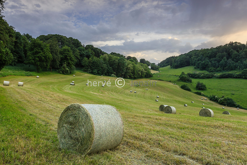 France, Jura (39), Salins-les-Bains, paysage de campagne après la fenaison // France, Jura, Salins les Bains, countryside and round bales hay