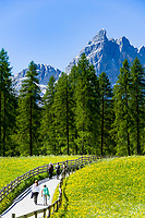 Italy, South Tyrol (Trentino - Alto Adige), near Sexten, district Moos: the picturesque Fischleintal (Val Fiscalina) at Drei Zinnen Nature Park (Parco Naturale Tre Cime), side valley of Sexten Valley (Valle di Sesto) - and Sexten Dolomites (Dolomiti di Sesto) with summit Einserkofel (Cima Una) | Italien, Suedtirol, bei Sexten, Ortsteil Moos: das malerische Fischleintal im Naturpark Drei Zinnen - ein Nebental des Sextentals - vor der Sextener Sonnenuhr m it dem Gipfel Einserkofel