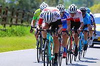 MEDELLIN - COLOMBIA, 13-02-2019: Tito Hernandez (Orgullo Paisa), German Chaves (Coldeportes - Zenu), Oscar Sevilla (Team Medellín), Stiven Cuesta (Deprisa), Simon Pellaud (IAM Excelsior) y Luis Felipe Valverde (GW Shimano), durante la segunda etapa del Tour Colombia 2.1 2019 con un recorrido de 150.5 Km, que se corrió entre La Ceja Canadá - Carmen de Viboral - Rionegro - Canadá - La Ceja. / Tito Hernandez (Orgullo Paisa), German Chaves (Coldeportes - Zenu), Oscar Sevilla (Team Medellín), Stiven Cuesta (Deprisa), Simon Pellaud (IAM Excelsior) and Luis Felipe Valverde (GW Shimano), during the second stage of 150.5 km of Tour Colombia 2.1 2019 that ran through La Ceja Canada - Carmen de Viboral - Rionegro - Canada - La Ceja.  Photo: VizzorImage / Anderson Bonilla / Cont