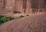 White House Ruin, Canyon de Chelly Tribal Park,  Navajo Reservation, Arizona