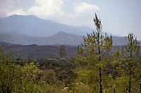 The ruined Templo de San Juan Parangaricutiro near Angahuan, Michoacan, Mexico. The cone of Volcan Paricutin is in Background. In 1943, this church was half-buried by a lava flow from nearby Volcan Paricutin.