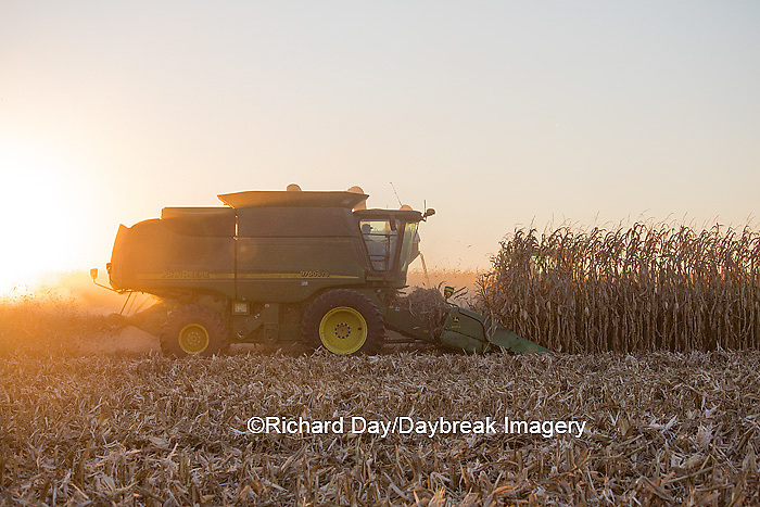 63801-06715 John Deere combine harvesting corn at sunset, Marion Co., IL