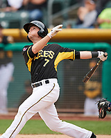 Matt Williams (7) of the Salt Lake Bees swings while at bat against the El Paso Chihuahuas in Pacific Coast League action at Smith's Ballpark on April 30, 2017 in Salt Lake City, Utah. El Paso defeated Salt Lake 12-3. This was Game 2 of a double-header originally scheduled on April 28, 2017.  (Stephen Smith/Four Seam Images)