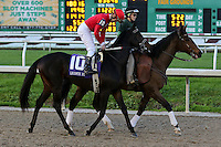 January 17, 2015: Another Lemon Drop (KY) with Calvin H Borel in the Lecomte Stakes at the New Orleans Fairgrounds course. Steve Dalmado/ESW/CSM