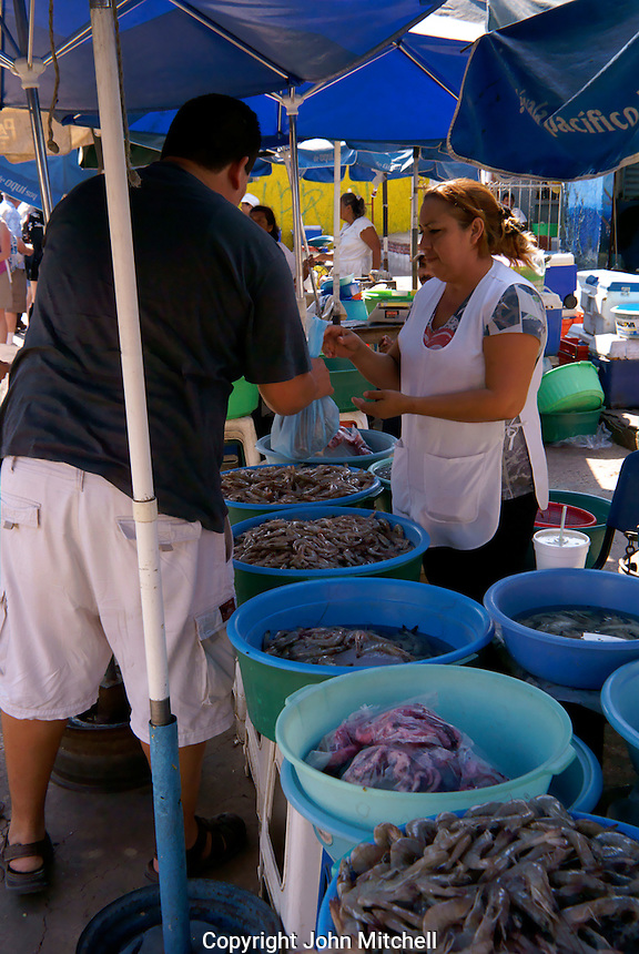 Woman selling freshly caught shrimp at the fisherman's market in Mazatlan, Sinaloa, Mexico