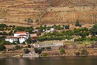 vineyards quinta dos murcas douro portugal