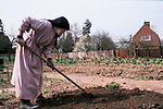 Catholic Nun a member of the Sister of the Precious Blood Hertfordshire England. Working inn the gardens.