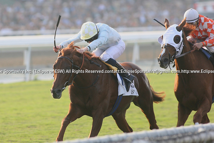 07 November 2009: Conduit and Ryan Moore win the Breeders' Cup Turf at Santa Anita Race Track in Arcadia, CA.