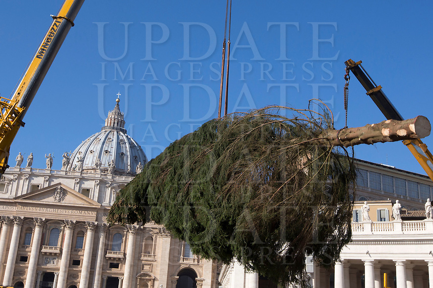 Una gru sistema l'albero di Natale, di 25 metri di altezza, proveniente dalla Baviera, in piazza San Pietro, Citta' del Vaticano, 19 novembre 2015.<br /> A crane lifts a 25-meter tall Christmas tree coming from Bavaria, Germany, in St. Peter's Square, at the Vatican, 19 November 2015.<br /> UPDATE IMAGES PRESS/Riccardo De Luca<br /> <br /> STRICTLY ONLY FOR EDITORIAL USE
