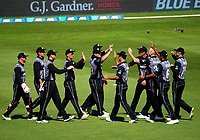 The Black Caps celebrate a wicket during the International Twenty20 cricket match between the NZ Black Caps and Pakistan at Westpac Stadium in Wellington, New Zealand on Saturday, 6 January 2018. Photo: Dave Lintott / lintottphoto.co.nz
