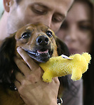 Benjamin Hawley and Kaylee Byle celebrate with their dog Sir Winston after winning the Wiener Dog Races at the Reno Rodeo in Reno, Nev., on Saturday, June 28, 2014.<br /> Photo by Cathleen Allison
