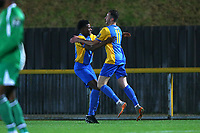 Connor Hammond of Romford scores the first goal for his team and celebrates during Romford vs Haringey Borough, Bostik League Division 1 North Football at Ship Lane on 8th November 2017
